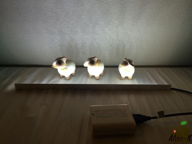 LED08